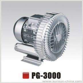 SunSun PG-3000