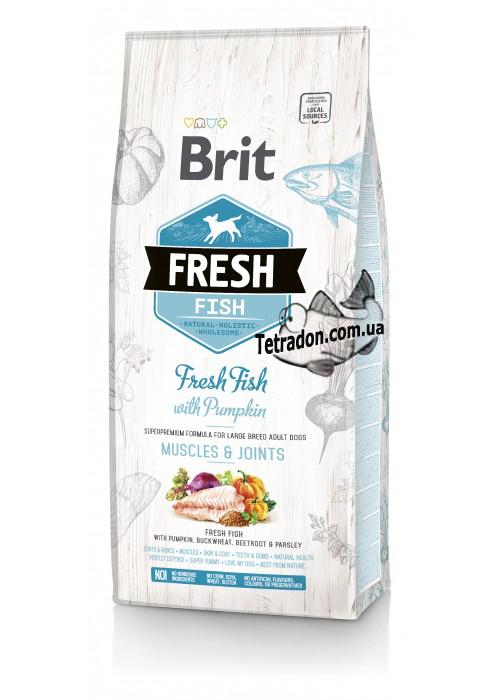 brit-fresh-fish-pumpkin_adult_