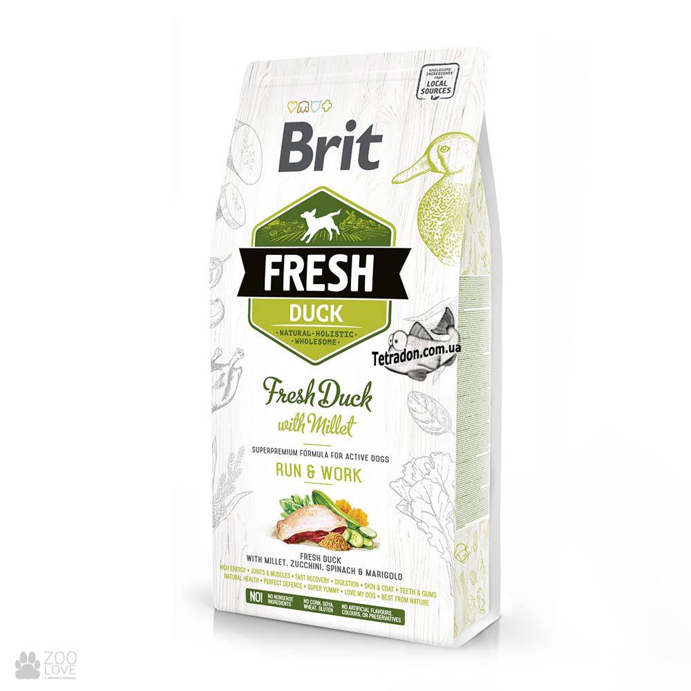 brit_fresh_duck_millet_run_work_active_adult_large_log