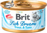 Brit_Fish_Drims_s_forelyu_i_tuntsom-logo