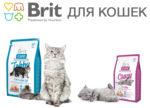 BRIT для котов