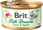 brit-fishdreams-tunec-i-kalmar-logo