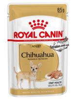 rc-chihuahua-adult-logo