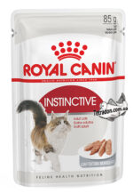 rc-instinctive-loaf-logo