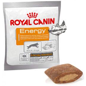 royal-canin-energy.jpg-logo