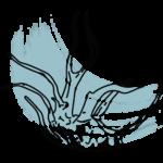 Оформление, дизайн аквариума
